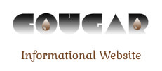 Cougar Oil and Gas – Informational Website